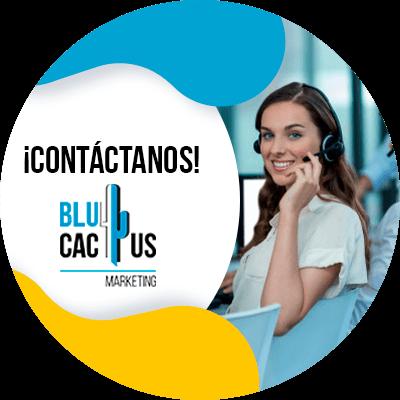 BluCactus - embudo de ventas - contacto