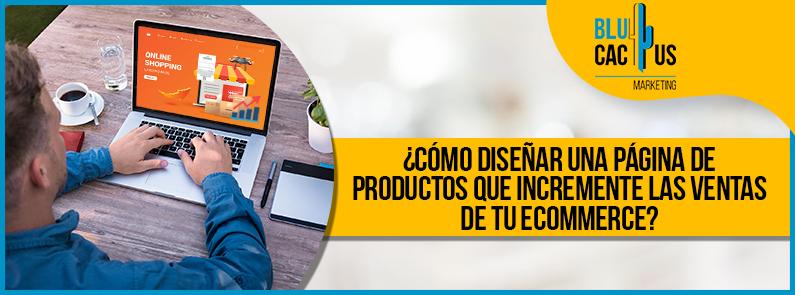BluCactus - página de productos - titulo