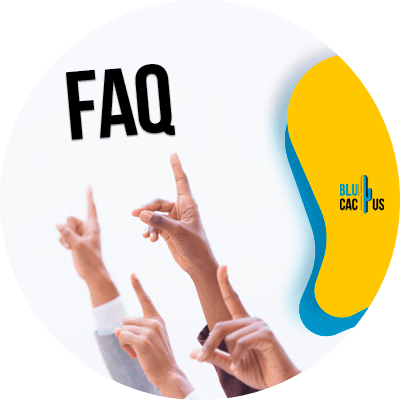 BluCactus - Página FAQ para SEO - informacion importante