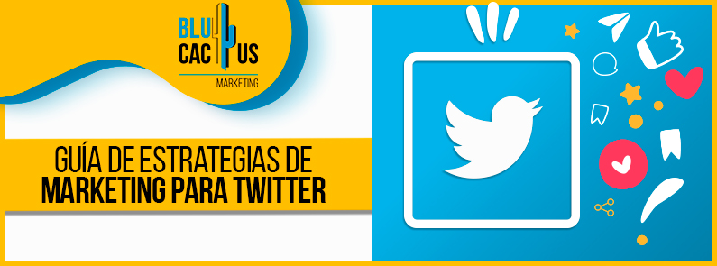 BluCactus - marketing para Twitter - titulo
