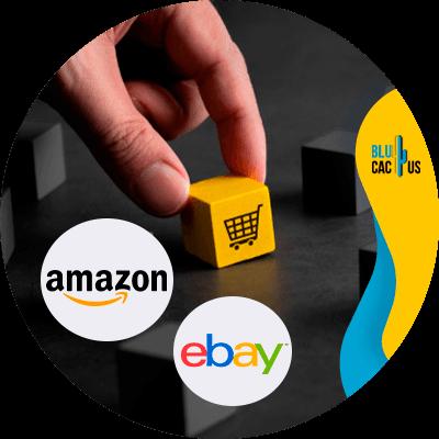 BluCactus - comercio electrónico - Datos importantes