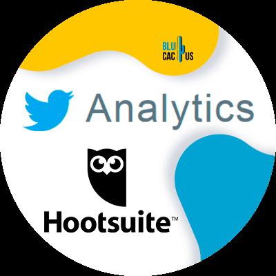 BluCactus - marketing para Twitter - datos importantes