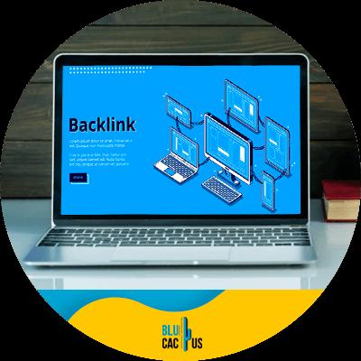 Blucactus-Backlinks