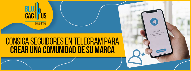 BluCactus - seguidores en Telegram - banner