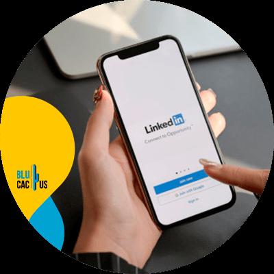 Blucactus - crea un perfil en linkedin