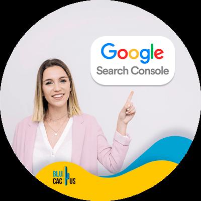 BluCactus - Google Search Console - informacion importante