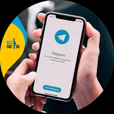 BluCactus - seguidores en Telegram - datos importantes