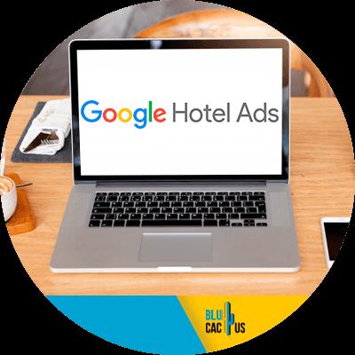 BluCactus - Google Travel - datos importantes