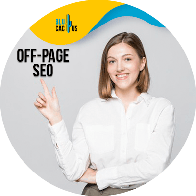 Blucactus - SEO off page