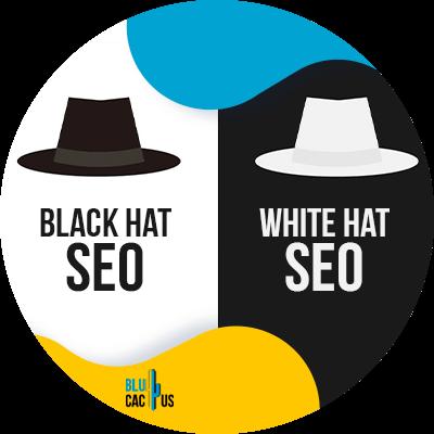 Blucactus - SEO white hat y SEO black hat