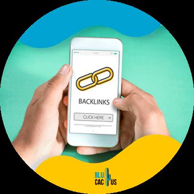 Blucactus-construye-mas-backlinks