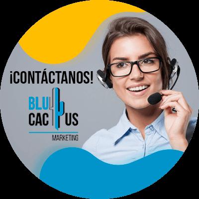Blucactus - contáctanos