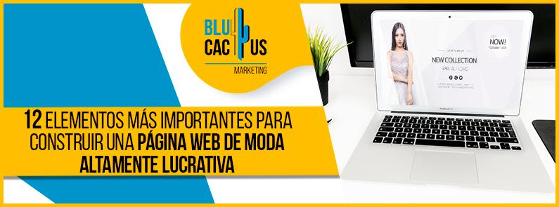 Blucactus - 12 elementos mas importantes para construir una pagina web de moda altamente lucrativa