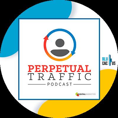 Blucactus - perpetual traffic