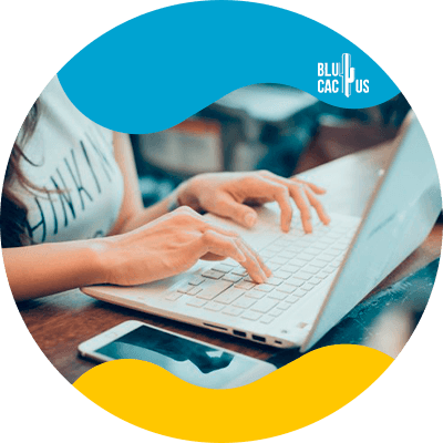 Blucactus - 6. Lanza y optimiza - Cómo hacer un plan de negocio para un blog en 2021