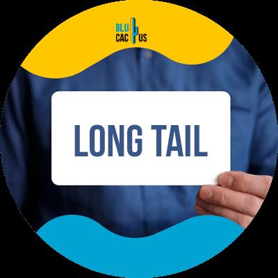 BluCactus - long tail - datos importantes