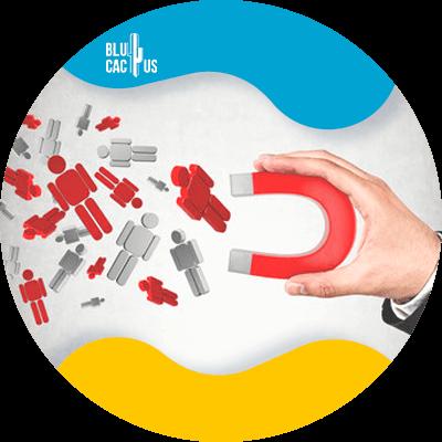 BluCactus - Lead Magnets - datos importantes