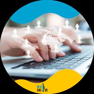 Blucactus - Comparte la información de tu negocio