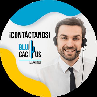 BluCactus - Cold lead - datos importantes