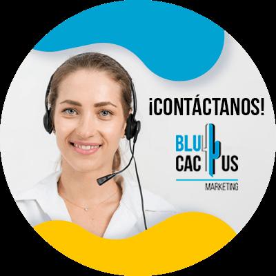 BluCactus - término de Stakeholders - datos importantes