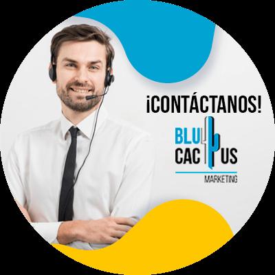 BluCactus - informacion