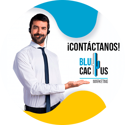 Blucactus - contáctanos - Guía SEO para Hoteles y Restaurantes