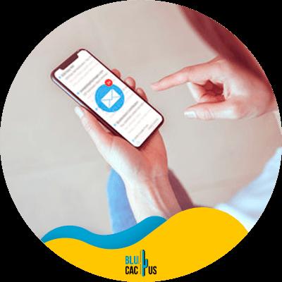 BluCactus - marketing por correo electrónico en mi negociomarketing por correo electrónico en mi negocio - informacion