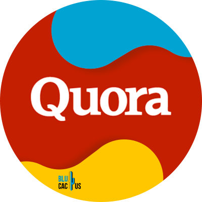 Blucactus - 11. Usa Quora - 15 formas para aprender cómo desarrollar un blog