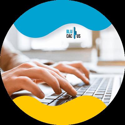 BluCactus - Marketing de contenidos - datos importantes