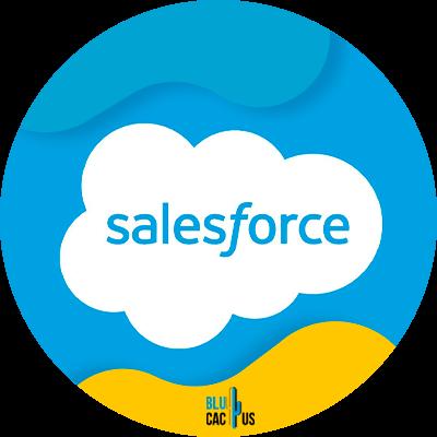 Blucactus-3-Salesforce