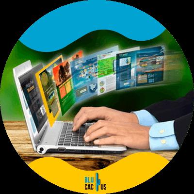 Blucactus - 5. Crea un portafolio - Cómo empezar un negocio freelance en el 2021