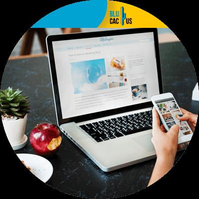 Blucactus - 6. Crea ejemplos de lo que puedes ofrecer - Cómo empezar un negocio freelance en el 2021
