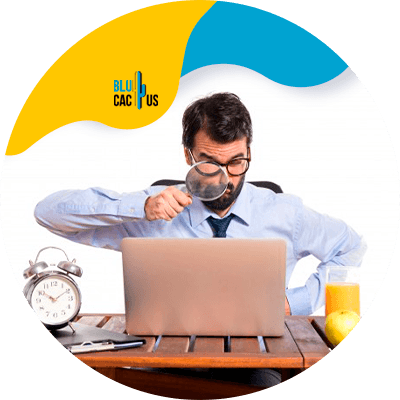 Blucactus - 6. Conoce a tu audiencia - 15 formas para aprender cómo desarrollar un blog
