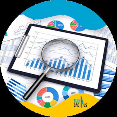 BluCactus - infografías -datos importantes