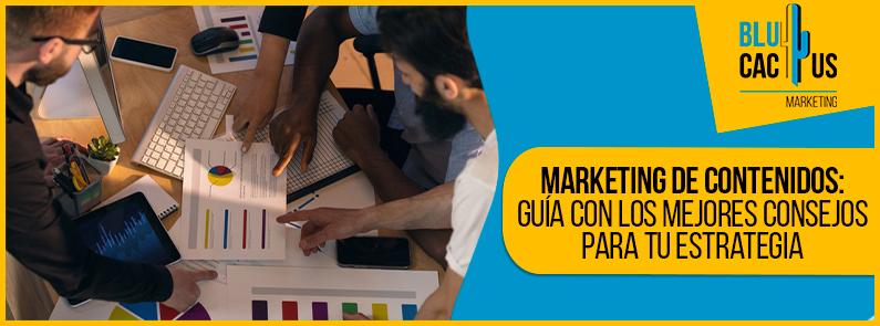 BluCactus - Marketing de contenidos - banner
