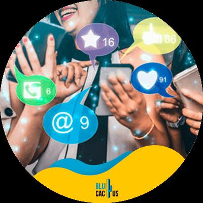 BluCactus - Engagement - informacion