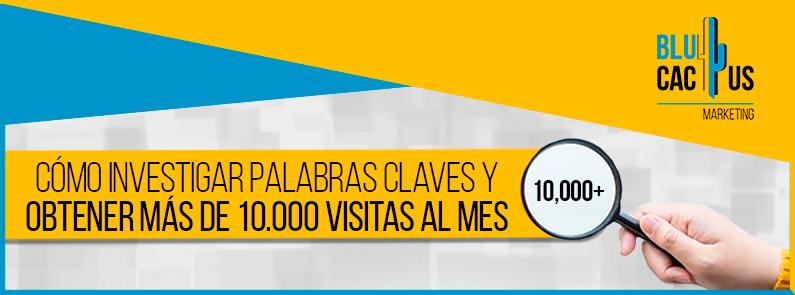 Blucactus-Como-investigar-palabras-claves-y-obtener-mas-de-10.000-visitas-al-mes-portada