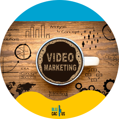 BluCactus - video marketing