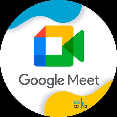 BluCactus - google meet