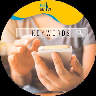Blucactus - Palabras clave con volumen alto y poca competencia