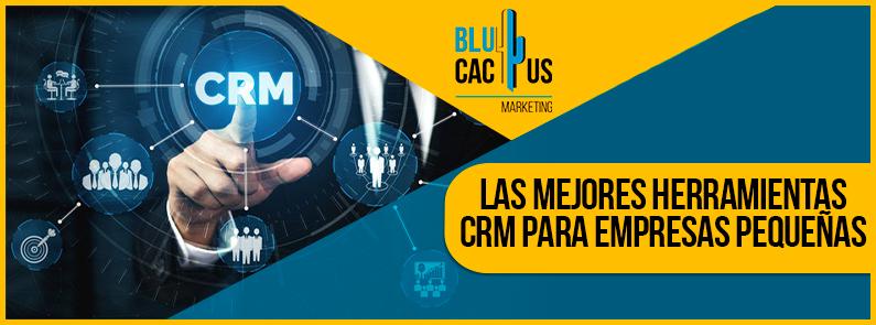 Blucactus-Las-mejores-herramientas-CRM-para-empresas-pequeñas-portada