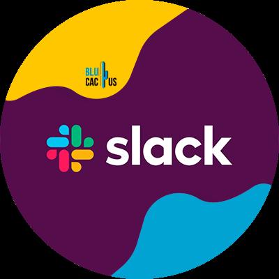 BluCactus - slack