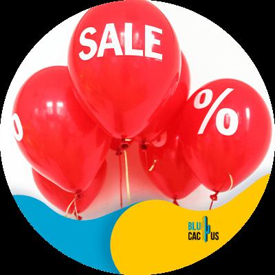 BluCactus - oferta