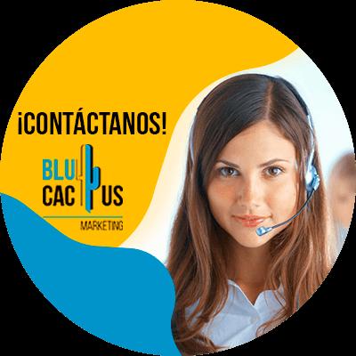 BluCactus - ¿Cómo hacer ofertas en su negocio? - contacto