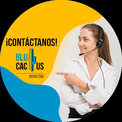 BluCactus - Engagement - contacto