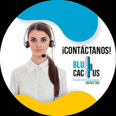 BluCactus - Marketing de contenidos - contacto