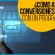 Blucactus - ¿Cómo Aumentar Las Conversiones De Tu E-commerce Con Un Programa de Referidos?