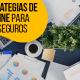 Blucactus - Las Mejores Estrategias De Marketing Online Para Compañías De Seguros