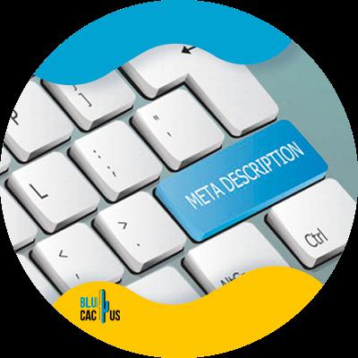 BluCactus - caracteres para tu blog - datos