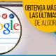 BluCactus - actualizaciones de algoritmos de Google